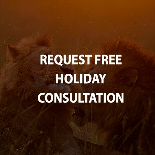 Request free holiday consultation