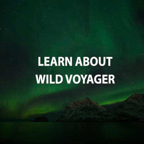 Learn about Wildvoyager