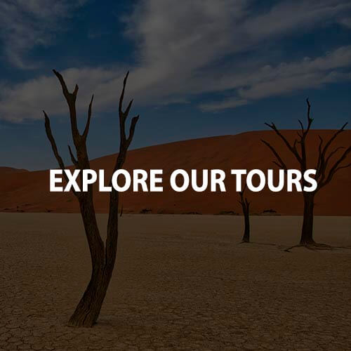 Explore our tours