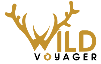 Wildvoyager