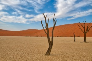 Namibia photo gallery