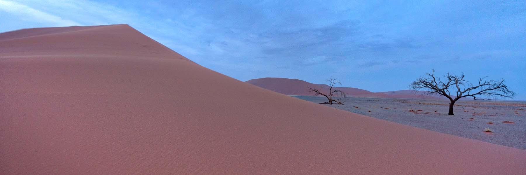 Travel to thar desert, kalahari desert, namib desert and sahara desert