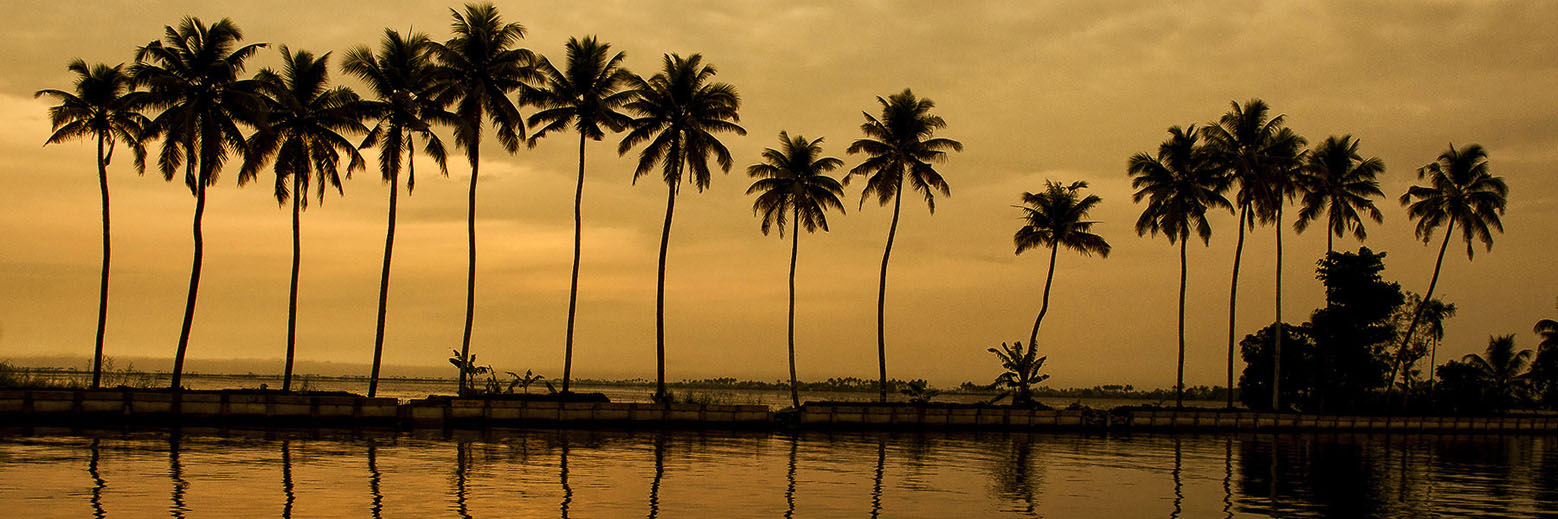 Kerala with Backwaters