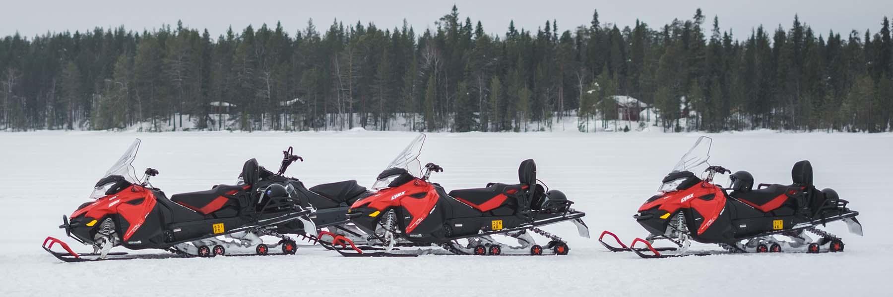 Snow activities like snowmobile, dog sledding, reindeer sledding etc