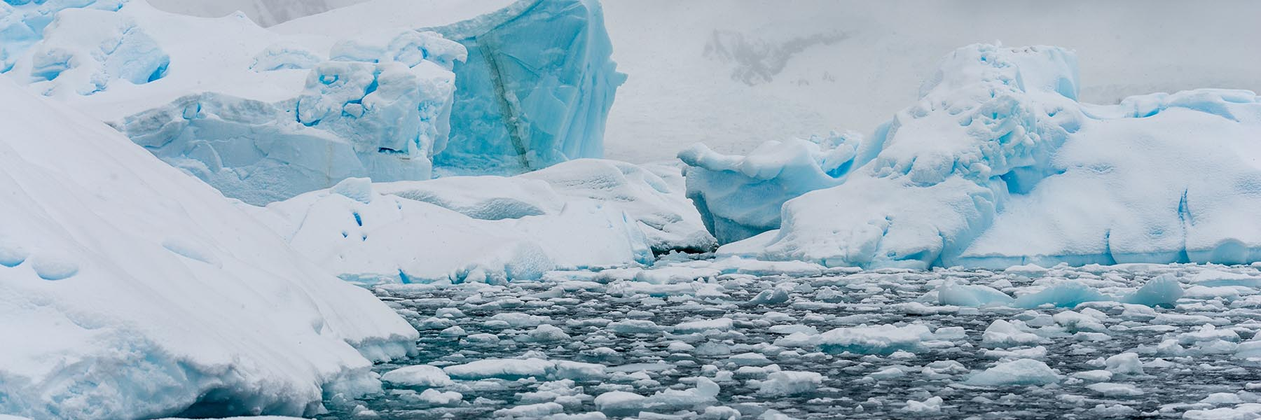 Highlights of Frozen Continent