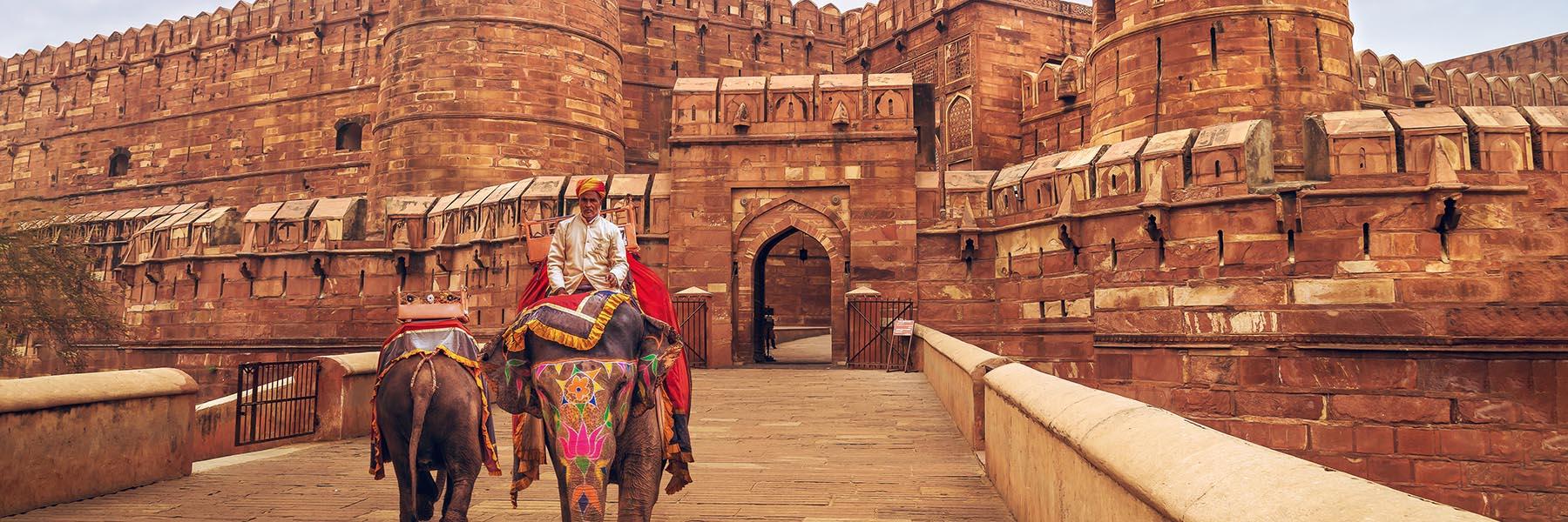 Best India Tours