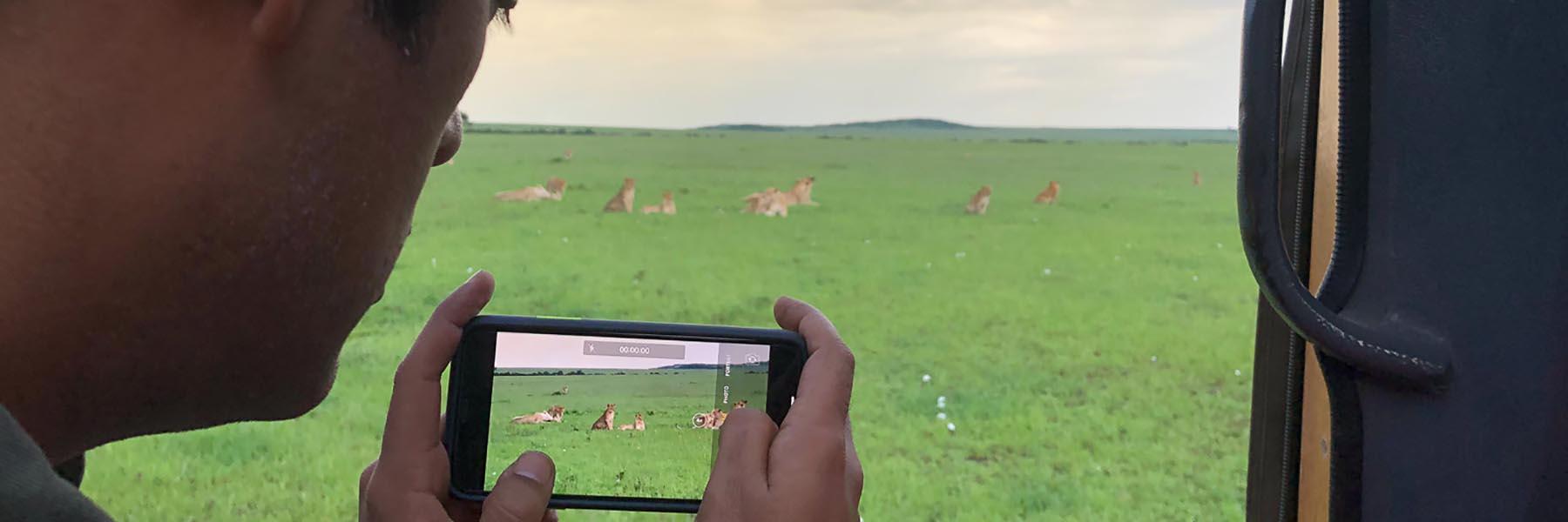 Wildlife safaris in India and Africa