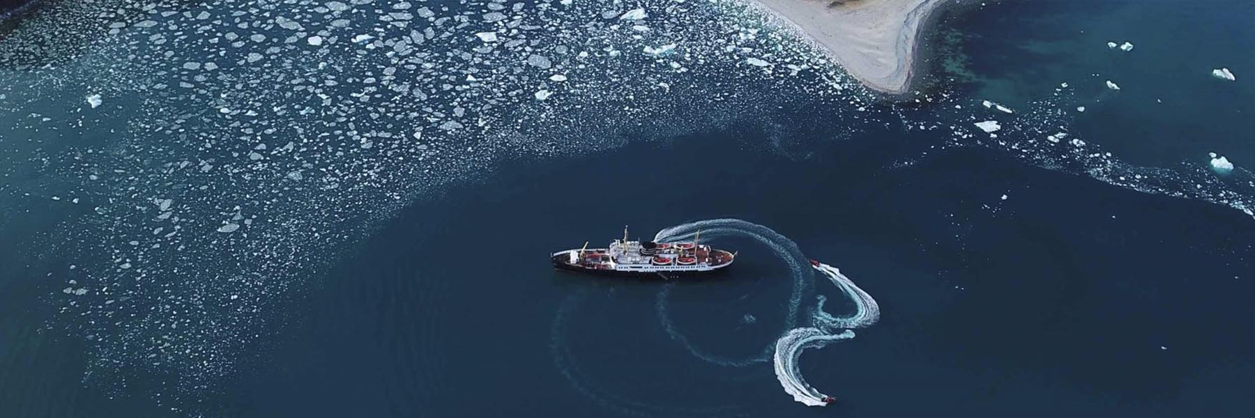 Wildlife cruises by Wild Voyager