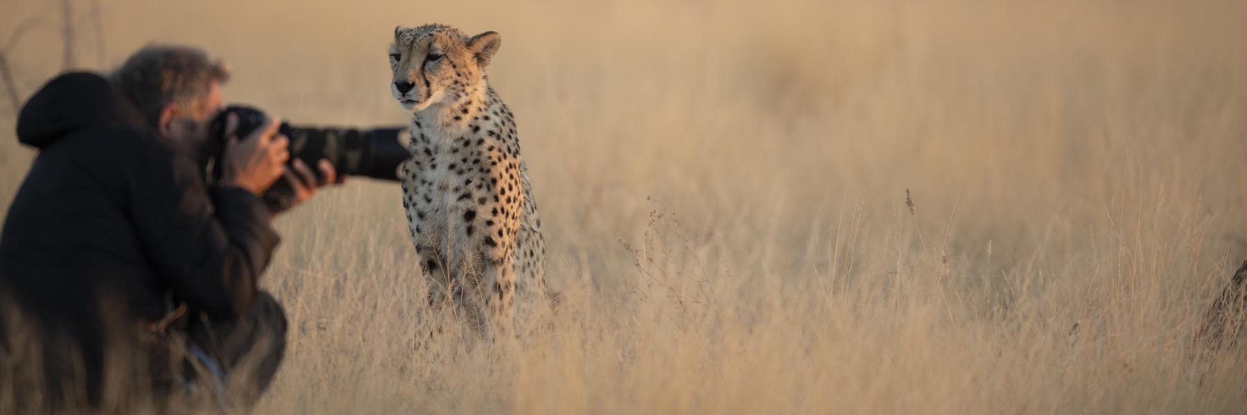 Wild Voyager Photography Tours