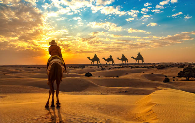 tourist on camel safari at the Thar desert at sunset with view of camel caravan in Jaisalmer, Rajasthan
