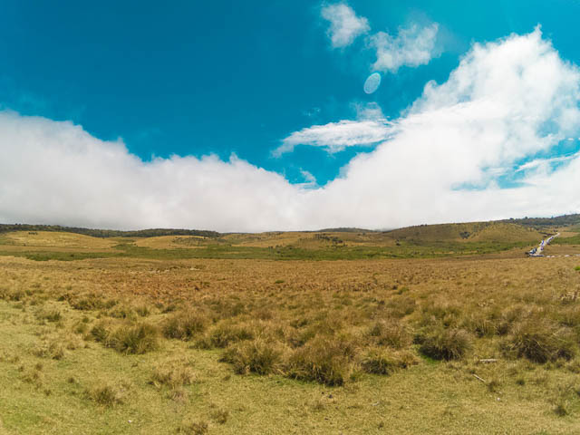 blue sky over montane grasslands in horton plains nuwara eliya, sri lanka