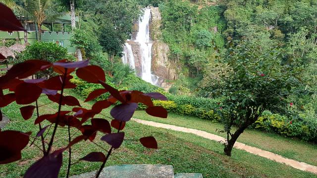 green surrounding around ramboda falls in nuwara eliya, sri lanka