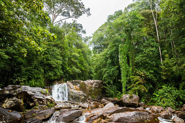 waterfall amidst the jungles of sinharaja rainforest, sri lanka