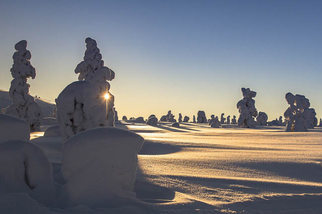 golden sunrise against winter landscape riisitunturi national park