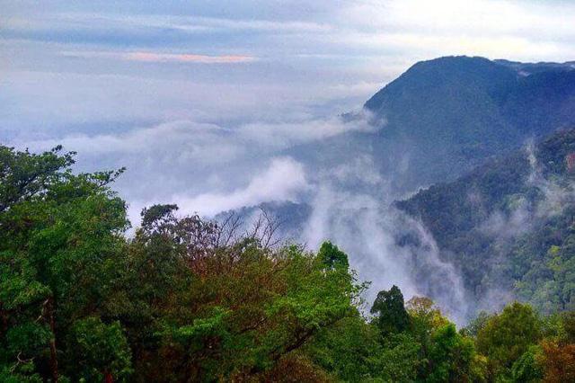 Agumbe rainforest amidst clouds in Karnataka India