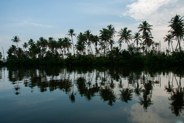 coconut trees and clear blue sky reflection on backwaters Alappuzha Kerala India