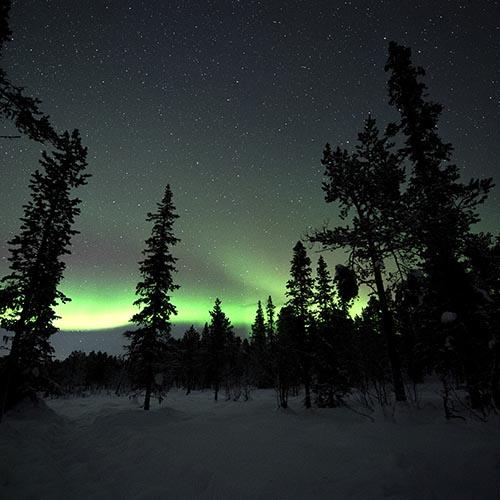 Rovaniemi tour