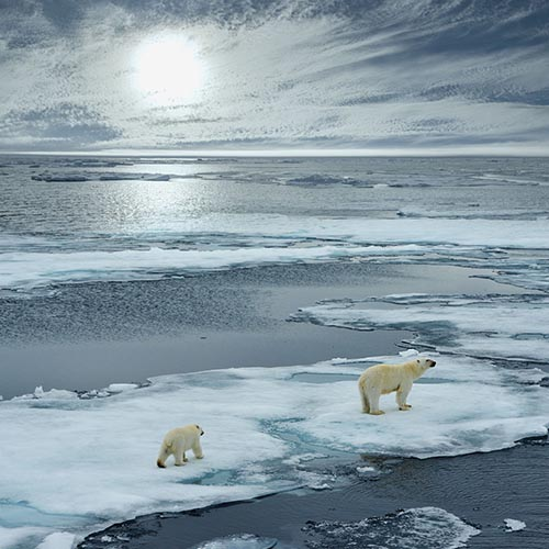 Svalbard tour