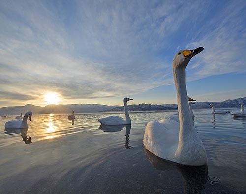 Hokkaido tour
