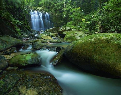 Malaysian Borneo tour
