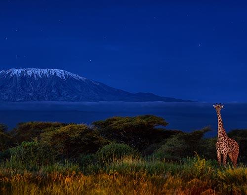 Amboseli National Park tour