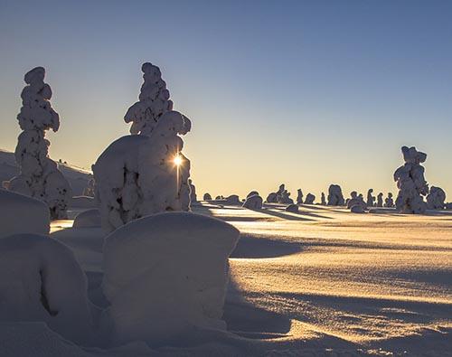 Sweden northern lights tours
